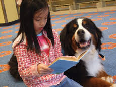 Young girl reading a book to a dog